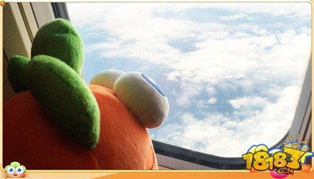 海航助力阿波厦门寻爱之旅 萝卜真的上天了
