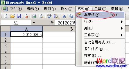 Excel表格数字转换成文本详细指南