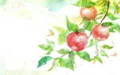 谁丢的苹果