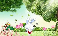 迷糊小兔子